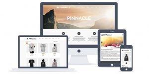 pinn_product_lite