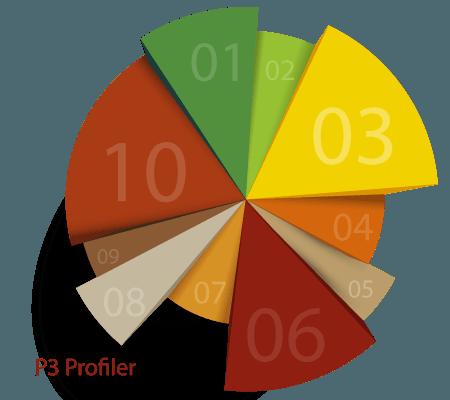 P3-Profiler-plugin
